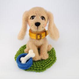 Spaniel Dog Breed